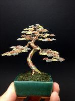 3 color wire bonsai tree by Ken To by KenToArt