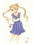 Sailor Moon by Julietto