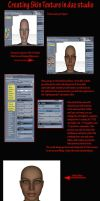 Skin Tutorial in Daz Studio by goody1870