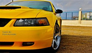 yellow Mustang by aLwHm