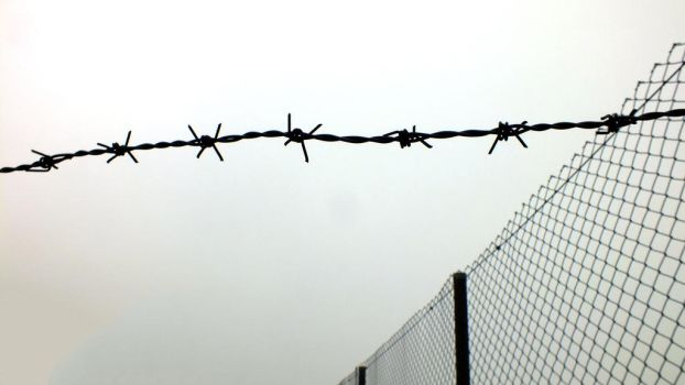 Barbed wire - 2 by ahmad-y