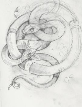 Snakes by miorats