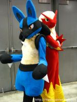 Lucario and Blaziken by scatnix