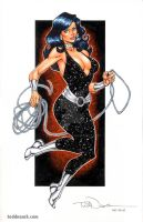 Donna Troy: Dallas Comic Con by ToddNauck