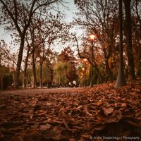 Autumn Evening by DrAndrei