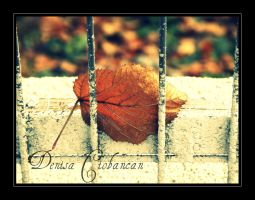 Time Is A Jailer by Deni1Kitty