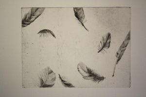 dry point feathers by SwarzezTier