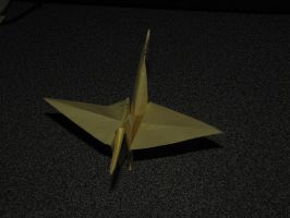 The First Crane Folded by Kaatman
