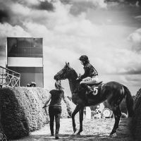 .equestrian. by awphotoart