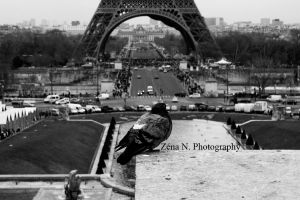 PARIS. by Zena-N