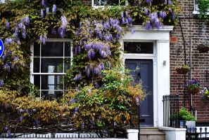 Notting Hill houses by LeaLion