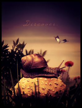 Discover by Cl0ud-Nine