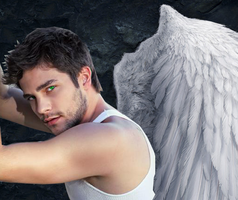 Cam Briel _Traditional Wings_ by Blissful-DeathTrap