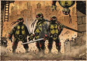 Teenage Mutant Ninja Turtles by craig-bruyn