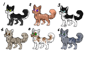 Cat Adopts by sshoes