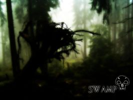 Magic The Gathering Swamp by wallofstars