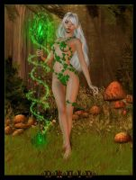 Druid by Nianya