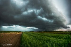 The coming thunderstorm by NorbertKocsis