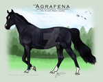 CF Agrafena by JNFerrigno