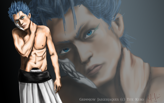 Grimmjow Wallpaper - 1900x1200 by jennifibber