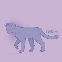 Ashfur by Shimmerspirit