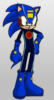 Megaman the hedgehog by Sonatawind
