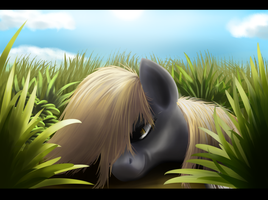 Resting in the grass by Newlifer