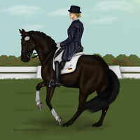 Hohensteins first Competition by Minnie1994