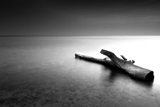 Something Lonely by rylphotography