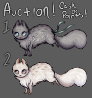 Lunia and Solis - Auction! [CLOSED] by CoyoteAdopts