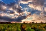 Late Summer Sky 02 by FurImmerUndEwig