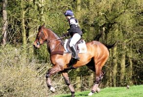 Eventing series 2014 - 21 by x-vixen-x