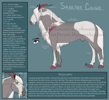 B-013 Sanctus Caligo reference by MatrixPotato