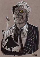 Two Face by DenisM79