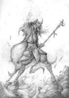 The Druid by troubadour93