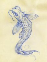 Koi Fish Sketch by Daeo