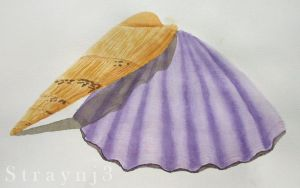 Watercolour Shells by Straynj3