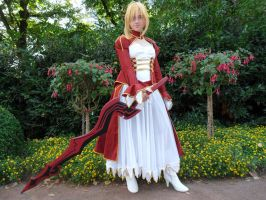 Connichi '12 - Saber Extra by Moeker