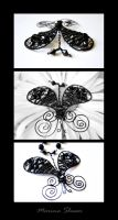 Black Paisley Butterfly by mslusar