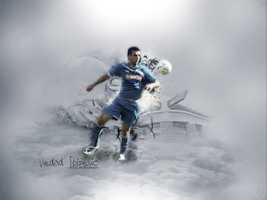 Vedad Ibisevic by MakaayR