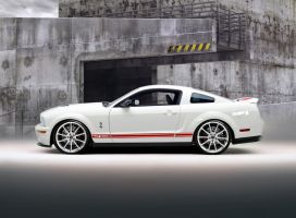 WhiteRed GT500 Coupe by lovelife81