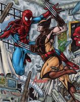 Spider-Man vs Wolverine - MGH by tonyperna