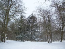 Under the snow 5 by Cycy-stock