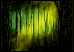 Mystic forest by Pevel