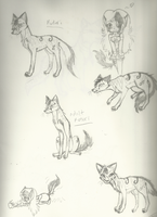 Kotori fox sketches by Tess-Is-Epic