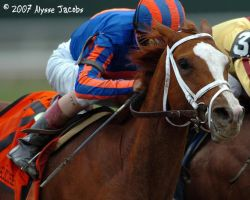 Rags to Riches wins the Belmon by apajax6