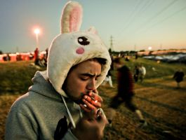 Lighting The Bunny's Spliff by esbenlp
