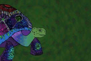 I like turtles by hippotagoose