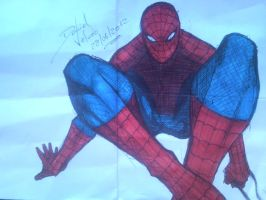Here's Spidey! by D-Architect