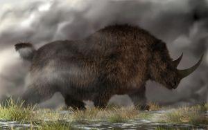 Woolly Rhinoceros by deskridge